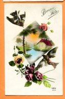 HB538, Oiseaux, Bird, Bonne Fête, Rose, Fantaisie, REX 2414, Circulée Sous Enveloppe - Vogels