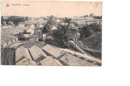 Hoeilaart, Hoeylaert, Terdellen, Serres Druiven, Met Postzegel Koning Albert - Hoeilaart