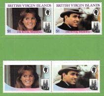 MiNr.552+553 Waagr.Zsdr.-Paar 0hne Inschrift Virgin Islands - British Virgin Islands