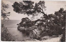 TOULON,var,le Cap Brun,port Magaud,les éditions D'art,yvon,vue Sur Mer,83 - Toulon