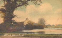 THE POND WALTON ON THE HILL - Surrey