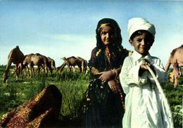 Saudi Arabia, Desert Children With Camels (1970s) Postcard - Saudi Arabia