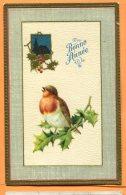 HB609, Bonne Année, Rouge-Gorge En Relief, 723, Fantaisie, Circulée 1913 - Vogels
