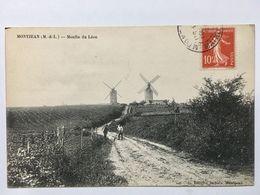 MONTJEAN Sur LOIRE  49 RARE Moulin Du Léon - France