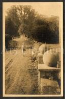 Photo Postcard / Foto / Photograph / Fille / Girl / On The Road / Sur La Route / Unused - Photographie