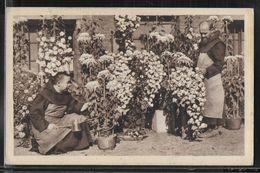 CPA JAPON - Au Pays Des Chrysanthèmes - Giappone