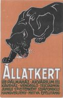 ALLATKERT -  Palmahaz Akuarium - Budapest - Aut. Szekesvov Hazikonyomda - Pubblicitari