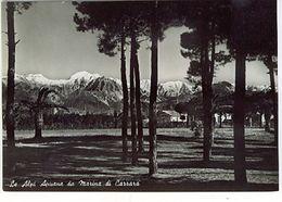 CARRARA ALPI APUANE DA MARINA DI CARRARA 1954 FG VG SENZA BOLLO - Carrara
