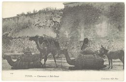 TUNIS - Chameaux A Bab-Benat  (103444) - Tunisie