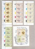 Venda Blocks And Mini Sheet Of MNH Stamps 1981 Orchids - Venda