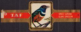 Glans Spreeuw / Starling - Bird Birds - Belgium Belgique - TAF - CIGAR CIGARS Label Vignette - Etichette