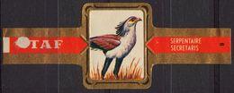Serpentaire / Eagle - Bird Birds - Belgium Belgique - TAF - CIGAR CIGARS Label Vignette - Etiketten