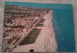 Alba Adriatica - Panorama 1981 Animata - Teramo