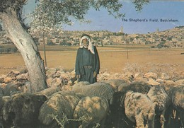 11794-BETHLEHEM-THE SHEPHERD'S FIELD - Palestina
