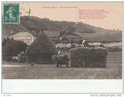 Giverny-Travaux Des Champs.Photo.Lavergne. - France