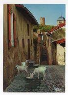 SIERCK-LES-BAINS--1993--Rue De St Christophe Et Tour Des Sorcières  (chèvres) - France