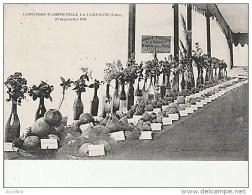 Concours D'Amfreville La Campagne-20 Septembre 1908. - France
