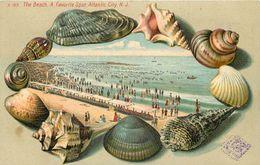 ATLANTIC CITY N.J. - The Beach A Favorit Spot, Carte 1900 Illustrée. - Atlantic City