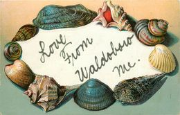 WALDOBORO M.E. -  Carte 1900 Illustrée. - Etats-Unis