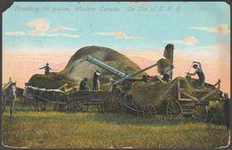 Threshing The Grains, Western Canada, 1911 - Postcard - Canada