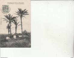 Campagne Du Maroc 1907-1908.Groupe De Palmiers Au Cimetière De Sidi Bélioud-Edit.Boussuge. - Morocco