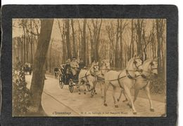 Gravenhage,Netherlands-Horse Drawn Carriage,H.M.de Koningin In Het Haagsche Bosch 1910s - Antique Postcard - Den Haag ('s-Gravenhage)