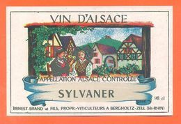 Etiquette Vin D'alsace Sylvaner Ernest Brand Et Fils à Bergholtz Zell - 98 Cl - Blancs