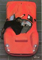 Sbarro Replica  -  Dingo Photocarte  -  CPM - Turismo