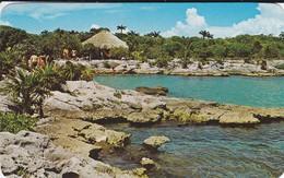 MEXIQUE--Palapa Y Laguna En Xel-ha  Quintana Roo--the XEL-HA Lagoon, Quintana Roo, México---voir  2 Scans - Mexique