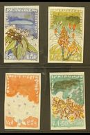 1975 UNIQUE HANDPAINTED ESSAYS For The 1975 Wildlife Issue (SG 77/80) - Four Small Watercolour Paintings By Sylvia Goama - British Indian Ocean Territory (BIOT)