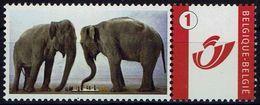 Schach Chess Ajedrez échecs - Belgiien Belgie Belgium - Elefant Elephant - Echecs