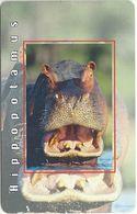 South Africa - MTN - Hippopotamus - 2004, 100.000ex, Used - Zuid-Afrika