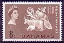 Bahamas, 1963, Freedom From Hunger, FAO, Food And Agriculture Organization, United Nations, MNH, Michel 185 - Bahamas (1973-...)