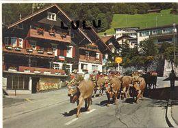 LIECHTENSTEIN : Alpabtreib Furstentum ( Troupeau De Vaches Avec Des Cloches ) - Liechtenstein