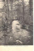 Houyet - CPA - L'Iwanne Dans Le Parc D'Ardenne - Houyet