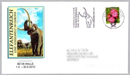 ELEFANTE FOSIL EN EUROPA - Elephant Fossil In Europe. BZ 06 Halle 2010 - Elefantes