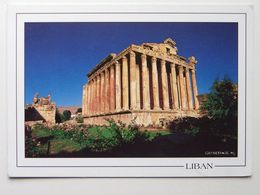 Lebanon / Baalbeck Temple The Bacchus - Libano