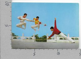 CARTOLINA NV CINA - THREE SECTION CUDGEL AGAINST TWO SPEARS - Trique A Trois Section Contre Deux Lances - 10 X 15 - Cina