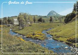 Gerbier De Jonc: Source De La Loire, L'Aigueneire, Perspective Du Mont Gerbier Et Des Chalets - Otros Municipios