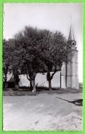 28 DONNEMAIN-SAINT-MAMES - L'église - France