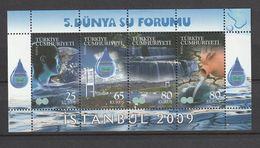 Turkey 2009, Water Forum-Bridge M.S. Mnh - 1921-... República