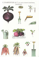 Gardening Postcard - Vegetables And Gardening Tools - Ref ND197 - Cultivation