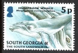 SOUTH GEORGIA 2004 Definitives (Juvenile Fauna) 5p: Single Stamp UM/MNH - South Georgia
