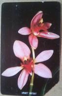 Orchids 50 Units - Sierra Leone