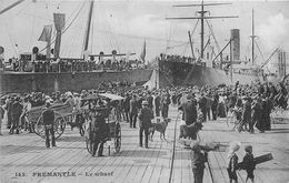 ¤¤  -  AUSTRALIE  -  FREMANTLE   -  Le Wharf  -  ¤¤ - Fremantle