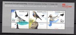 Hb-41 Holanda - Birds