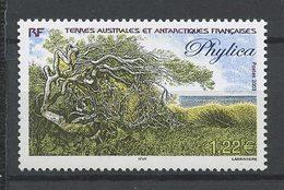 TAAF 2003  N° 363 ** Neuf  MNH Superbe Cote 5 € Flore Antarctique Phylica Flora Arbres Trees - Franse Zuidelijke En Antarctische Gebieden (TAAF)
