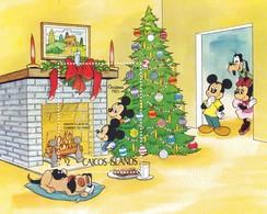 CAICOS ISLANDS DISNEY CHRISTMAS 1983 - Turks E Caicos