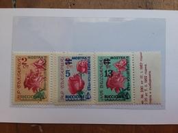 BULGARIA - Expo Europeistica Riccione 1963 Nuovi ** + Spese Postali - Nuovi