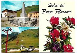 DIS849 - CASTELLO TESINO - PASSO BROCON - TRENTINO -  F.G. VIAGGIATA 1989 - Andere Steden